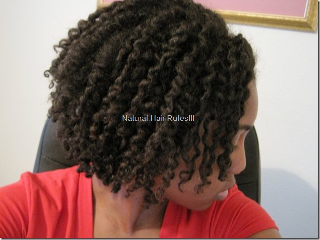 My Two Strand Twist Out