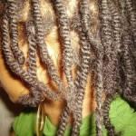 Not Braids But Three Strand Twists