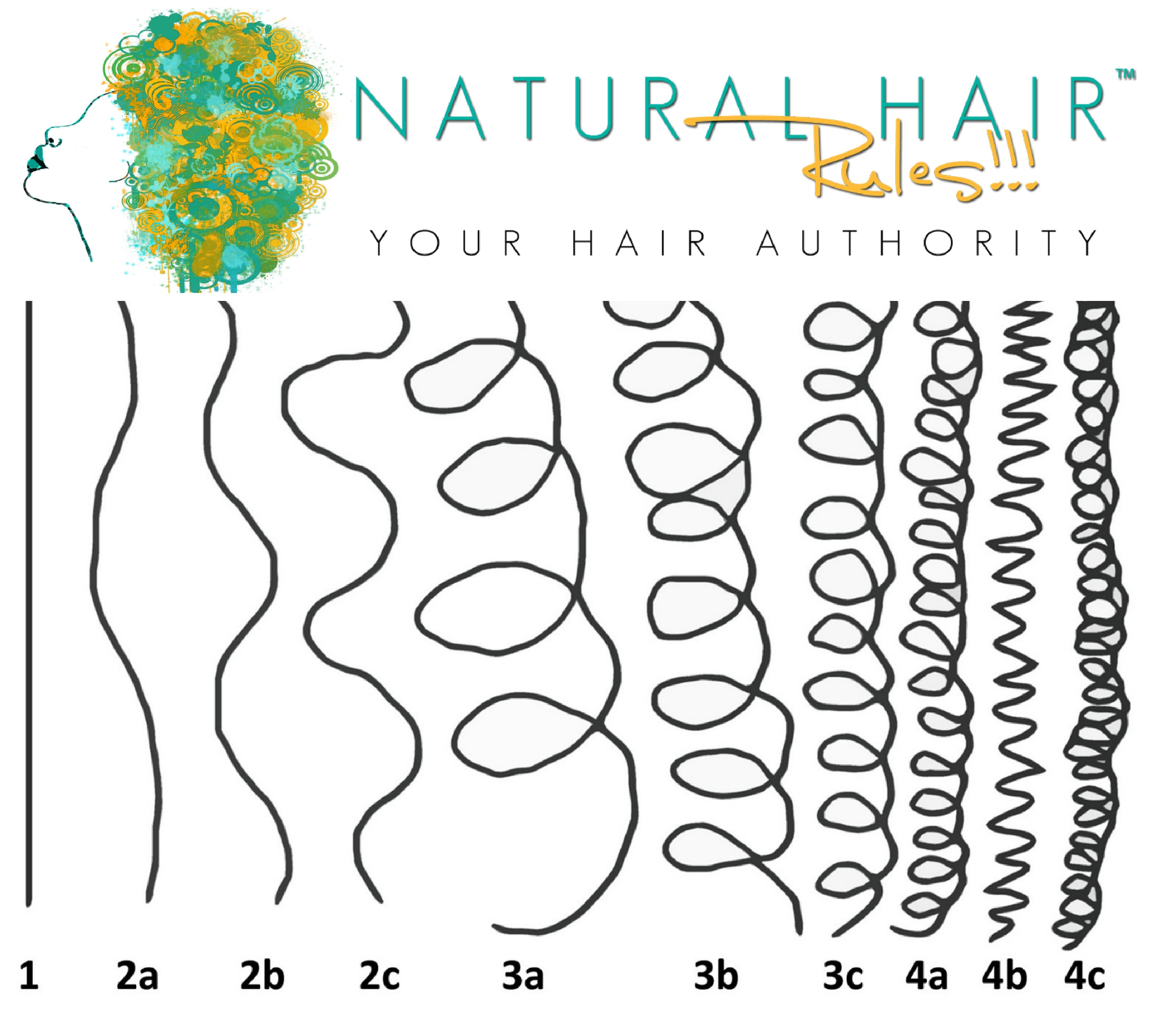 Natural hair typing chart