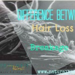 The Difference Between Hair Loss and Breakage