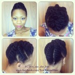 Chunky Flat Twist Updo for Neck Length or Longer